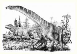 Skutečným zlatým věkem dinosaurů byly až dvě poslední periody druhohorní éry, tedy jura a křída. Během tohoto ohromně dlouhého časového období představovali dinosauři téměř výlučně jediné velké suchozemské tvory (s výjimkou některých ptakoještěrů a krokodýlovitých plazů). Zatímco sauropodi jako byl zobrazený Alamosaurus sanjuanensis mohli vážit více než 50 tun a obří teropodi jako byl Tyrannosaurus rex dosahovali hmotnosti nákladního automobilu, savci v té době nebyli větší než současná kočka nebo jezevec. Kredit: Vladimír Rimbala.