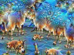 Umělá inteligence Deep Dream má snění vpopisu práce. Kredit: MartinThoma / Wikimedia Commons.