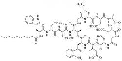 Lipopeptid daptomycin. Kredit: Fvasconcellos / Wikimedia Commons.