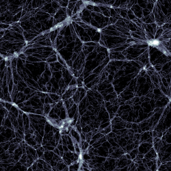 Simulace Illustris, zobrazen� temn� hmoty. Kredit: Markus Haider / Illustris collaboration.