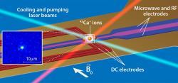 Ilustrace qubitu zuvězněného iontu vápníku. Kredit: APS/Alan Stonebraker.