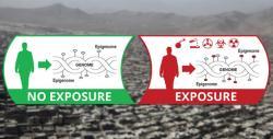 Epigenom je jako flashdisk se zážitky zokolního prostředí. Kredit: DARPA.