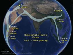 Putování nejstarších lidí rodu Homo po Zemi. Kredit: Antón, Potts & Aiello (2014), Science.