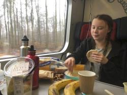 I tato snídaňová sestava Grety Thurnbergové při její cestě za politiky do Davosu plná plastů a pochutin z velmi od Švédska vzdálených míst, bez kterých by se dostatečně pestrá veganská strava asi těžko zajišťovala, ukazuje na problematičnost a složité paradoxy našeho environmentálního úsilí (foto Twitter).