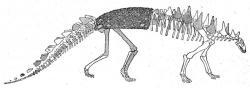 Nopcsova původní rekonstrukce tyreoforního dinosaura druhu Polacanthus foxii z roku 1905. Tento nodosaurid byl objeven již o 40 let dříve na ostrově Wight u jižního pobřeží Anglie. Zdroj: Wikipedie