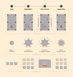 Jak obrátit čas na kvantovém počítači IBM? Kredit: @tsarcyanide/MIPT.
