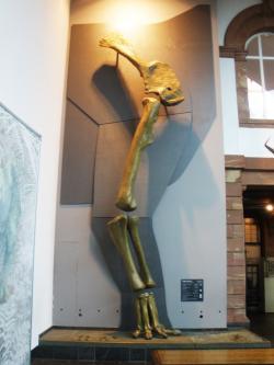 """Rekonstruovaná kostra přední končetiny a silueta těla supersaura, poskytující přibližnou představu o gigantických rozměrech těchto megasauropodů. Jen samotná """"lopatka"""" (skapulokorakoid) nahoře měří na délku téměř 2,5 metru. Exponát Senckenbergova přírodovědeckého muzea ve Frankfurtu nad Mohanem. Kredit: Ghedoghedo, Wikipedie."""