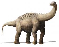 Titanosaurní sauropod druhu Yamanasaurus lojaensis, formálně popsaný roku 2019 z ekvádorského souvrství Río Playas. Tento zástupce čeledi Saltasauridae se stal prvním neptačím dinosaurem popsaným ze zmíněného státu a při svém stáří 66,9 milionu let představuje jednoho z nejmladších sauropodů, známých z Jižní Ameriky. Patří tak k množství nových druhů, které poněkud nabourávají představu, že se dinosauří biodiverzita na konci křídy razantně snížila. Kredit: Prehistopia; Wikipedia (CC BY-SA 4.0)