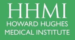 Logo HHMI.