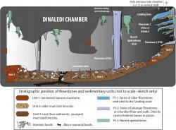 Schéma jeskyně snálezy (podle Dirks et al., DOI: 10.7554/eLife.09561.005)