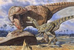 Carcharodontosaurus byl dominantním predátorem svých ekosystémů, nebyl ale jediným velkým teropodem na severu Afriky v době před 100 miliony let. Obojživelným protějškem mu byl ještě většíSpinosaurus, přímým konkurentem pak mohl být Deltadromeus (menší teropodní dinosaurus na obrázku). Ačkoliv se hmotnost karcharodontosaurů udává obvykle okolo 6 tun, nejvyšší odhady dosahují až dvojnásobku. Kredit: Mark Hallet, 1996 (pův. název Thunder in the Delta)