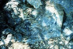 Prekambrické stromatolity zNárodního parku Glacier, Montana. Kredit: P. Carrara, NPS.