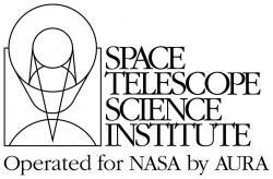 Logo Space Telescope Science Institute