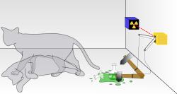 Schrödingerova kočka. Ani živá, ani mrtvá. Kredit: Dhatfield / Wikimedia Commons.