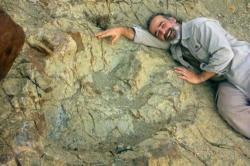 Argentinský paleontolog Sebastián Apesteguía pózuje vedle zkamenělého otisku stopy neznámého obřího teropoda, který žil na území současné Bolívie v době před 80 až 78 miliony let. Jednalo se patrně o gigantického abelisaurida, jehož kosterní fosilie dosud neznáme. K objevu stopy došlo náhodně v červenci roku 2016. Kredit: Grover Marquina (via CNN).