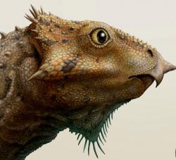 Rekonstrukce hlavy miniaturního rohatého dinosaura rodu Aquilops. Tito malí ceratopsové o velikosti králíka obývali území Montany před 108 až 104 miliony let. Kredit: Brian Engh, licence CC BY 2.5 (Wikipedie)