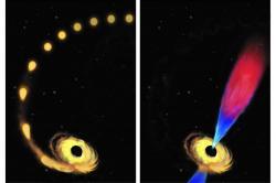 Rozfázované sežrání hvězdy černou dírou. Kredit: Amadeo Bachar / JHU.