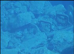 Snímky podvodní kamerou ze třetího bazénu (TEPCO).