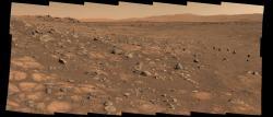 Světle zbarvené kameny vypadající jako dlaždice budou patrně prvními, ze kterých se budou odebírat vzorky hornin. Mosaikový snímek byl získán 8. července 2021 (zdroj NASA/JPL-Caltech).