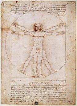 Leonardo da Vinci ztvárnil symetrii ve slavné perokresbě Vitruviánský muž. Postava vepsaná tuší dokruhu ičtverce má pupek ve středu kruhu. Jak se nyní ukazuje, základy naší symetrie sahají až do doby před před více než 500 miliony lety. (Kredit: Leonardo da Vinci, Web Gallery of Art)  http://sk.wikipedia.org/wiki/Vitruvi%C3%A1nsky_mu%C5%BE#/media/File:Vitruvian.jpg