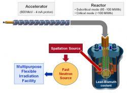 Celkové schéma univerzálního výzkumného reaktoru MYRRHA (zdroj SCK-CEN).