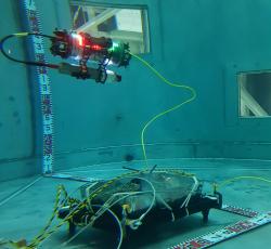 Test zobrazovacího zařízení v bazénu nového ústavu v Naraze s využitím makety zbytků zničené aktivní zóny (zdroj Matthew Nancekievill et al, Detection of Simulated Fukushima Daichii Fuel Debris Using a Remotely Operated Vehicle at the Naraha Test Facility, Sensors 2019, 19, 4602)
