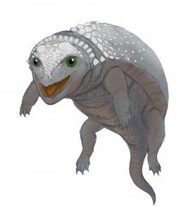 Jedna z možných podob podivného obojživelného a snad i rybožravého ankylosaurida druhu Liaoningosaurus paradoxus. Tento malý obrněný tyreofor dokládá, jak výrazně se mohla v průběhu druhohor proměňovat paleoekologie a s ní související anatomické adaptace u různých vývojových skupin dinosaurů. Kredit: PaleoEquii; Wikipedie (CC BY-SA 4.0)