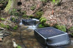 Obohacení potoků živinami vede v ke značnému úbytku uhlíku, což tamnímu životu ani trochu nesvědčí.  (Kredit:  UG)