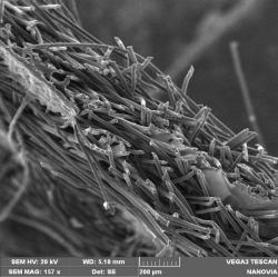 Struktura třívrstvého laminátu. Nanovlákenná vrstva je uprostřed a vypadá jako slabé průhledné blanky, zvětšeno 150 x. Kredit? J. Kůs.