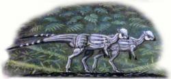 Rekonstrukce přibližného vzezření malého pachycefalosaurida druhu Sphaerotholus buchholtzae, jednoho z posledních známých neptačích dinosaurů. Spolu s dalšími zástupci tzv. lancijské fauny se stal přímou obětí katastrofického vymírání na konci křídy před 66 miliony let. Kredit: ABelov 2014; Wikipedie (CC BY-SA 3.0)