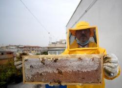 Spokojený včelař na střeše policejního velitelství v Římě se chlubí rámečkem se zcela zaplněným plástem medu. Kredit FAI (Italská federace včelařů).