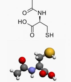 N-acetylcystein. Patentován v roce 1960, licencován 1968. Je rozpustný ve vodě a jako derivát aminokyseliny cysteinu je výroba levnou záležitostí. Reklama z něj udělala největšího hrdinu v boji s volnými radikály. Bez jeho suplementace z nás mají být trosky s pomalou regenerací a nechráněné před zraněním. (Kredit: Wikipedia)