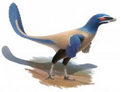 Rekonstrukce podoby nově popsaného troodontida druhu Albertavenator curriei. Žil před asi 71 miliony let na území kanadské provincie Alberta a patřil zřejmě k lovcům menších obratlovců a mláďat jiných dinosaurů. Kredit: Oliver Demuth https://odemuth.wordpress.com/