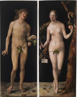 přes zakrytí listovím je patrné, že i první z genetických modifikací se zdařila a v Evině genomu nezůstala po genech z  Adamova Y chromozomu, ani památka. Kredit: Albrecht Dürer, Museo del Prado