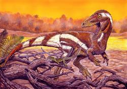 Jedním z téměř pěti desítek nových druhů neptačích dinosaurů, formálně popsaných v loňském roce, byl také raně křídový brazilský célurosaurní teropod Aratasaurus museumnacionali, jehož druhové jméno odráží skutečnost, že fosilie holotypu se štěstím přečkaly ničivý požár Brazilského národního muzea v Rio de Janeiru roku 2018. Kredit: Maurilio Oliveira; Wikipedie (CC BY 4.0)