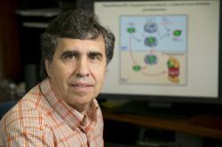Vadim Arshavsky, profesor oftalmologie a vedoucí výzkumného kolektivu na Duke University, spoluautor publikace z níž vychází tento článek. Kredit: Arshavsky Lab. Duke Univ.