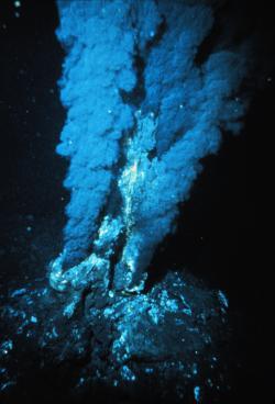 Nejmladší společný předek dnešních organismů miloval podmořské kuřáky. Jak fungovala LUCA, dávný společný předek dnešních organismů, jsme psali zde. Na snímku je černý kuřák vAtlantickém oceánu. Kredit: P. Rona / Wikimedia Commons, volné dílo.