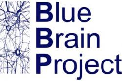 Blue Brain Project.