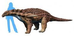 Přibližné vzezření borealopelty. Tento obrněný dinosaurus, který žil v období spodní křídy a jeho kůže byla rezavo-hnědě zbarvená, se živil převážně kapradinami. Spásal také porosty na čerstvě spálených stanovištích, kde jeho oblíbené kapradiny porůstaly požárem poškozenou půdu jako první. Kredit: Nobu Tamura; Wikipedie (CC BY-SA 4.0)