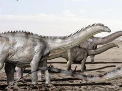 Stádo brontosaurů na pochodu. Tito obří sauropodi se zřejmě sdružovali do menších stád, některé fosilní nálezy však nasvědčují tomu, že mohli být poněkud více samotářští než jiní velcí sauropodi v ekosystémech severoamerické pozdní jury. Při pochodu za potravou mohli denně urazit až několik desítek kilometrů. Kredit: Nobu Tamura, Wikipedie (CC BY-SA 4.0)