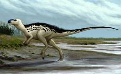 Rekonstrukce přibližného vzezření prvního pojmenovaného českého dinosaura. Burianosaurus augustai byl středně velký ornitopod, který obýval ostrovní prostředí v okolí dnešní Kutné Hory před 94 miliony let. Kredit: Edyta Felcyn, (CC BY-ND 4.0)