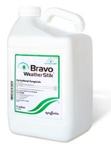 """Také v celosvětově prodávaném """"BRAVO"""" je jako účinná látka zakuklen chlorothalonil. Výrobce u obchodně úspěšného produktu nic měnit nebude. V našich hlavách by po přečtení tohoto článku mělo při čtení názvu BRAVO – chlorothalonil, zarezonovat něco významově naprosto jiného. (Kredit: Syngenta)"""