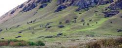 Odlesněná krajina Velikonočního ostrova foto z roku 2014. Kredit: Dropus, Wikipedia.