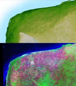 Snímky severozápadní části Yucatánského poloostrova s dobře patrným kruhovým okrajem nyní již hluboko pohřbeného impaktního kráteru Chicxulub. Na pevnině se v současnosti nachází necelá polovina jeho někdejší rozlohy, průměr celé struktury činí asi 180 až 200 kilometrů. Kredit: NASA (SRTM), Wikipedie (volné dílo).