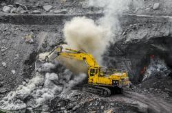 Vyroste budoucí uhlí. Kredit:TripodStories- AB / Wikimedia Commons.