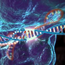 CRISPR. Kredit: McGovern Institute for Brain Research at MIT.