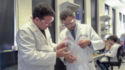 Matteo Pasquali, profesor na Rice University (vlevo) a Dr. Mehdi Razavi z Texas Heart Institute, při kontrole vlákna uhlíkových nanotrubek upravených v Pasqualiho laboratoři tak, že jsou vhodné k vytváření elektricky vodivých přemostění na srdečním svalu. Kredit: Texas Heart Institute.