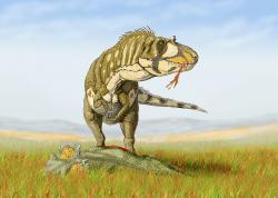 Umělecká představa o podobě daspletosaura, pojídajícího mrtvého ceratopsida. D. torosus byl zřejmě dostatečně robustní a silný, aby dokázal úspěšně zaútočit i na středně velké rohaté dinosaury (např. rody Coronosaurus, Chasmosaurus, Albertaceratops a další). Kredit: Dmitrij Bogdanov, Wikipedie (CC BY-SA 3.0)