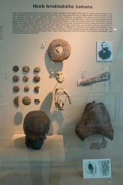 Výbava z hrobu brněnského šamana, nejspíš šamanské náčiní. Gravettien, 27 300 let před teď. Pavilon Anthropos, Brno. Kredit: Zde, Wikimedia Commons.