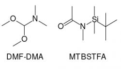 Chemická struktura derivatizačních činidel užitých v laboratoři MOMA pro snazší stanovení aminokyselin a jiných skupin biologicky významných látek. První vzorec z leva DMF-DMA a druhý MTBSTFA. Kredit: VD.